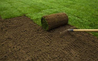 Laat er eens gras over groeien!
