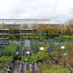 Basiscursus plantenkennis van start .greenlink