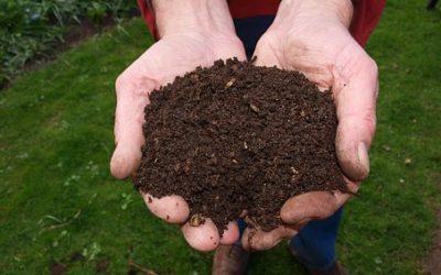 Principes van een gezonde tuin aanleggen
