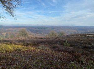 natuur en perspectief.greenlink